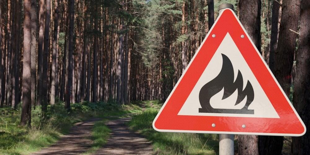 Nicht nur Waldbrände werden in Deutschland immer häufiger. Durch den Klimawandel treten allgemein vermehrt Vegetationsbrände auf. Deswegen ist jetzt ein nationales Konzept zur Vegetationsbrandbekämpfung erschienen